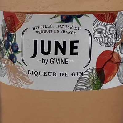 JUNE by G'VINE - GIN - 70cl